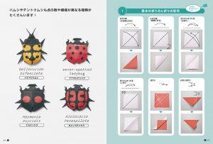 Insecten vouwen zonder knippen of snijden 3
